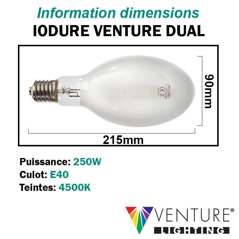 Ampoule iodure 250W VENTURE DUAL ovoïde