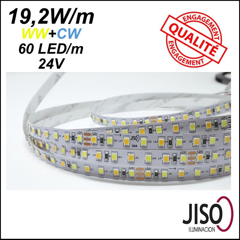 Ruban LED double couleur - Bandeau LED WW/CW