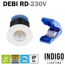Spot LED encastré fixe INDIGO DEBI RD