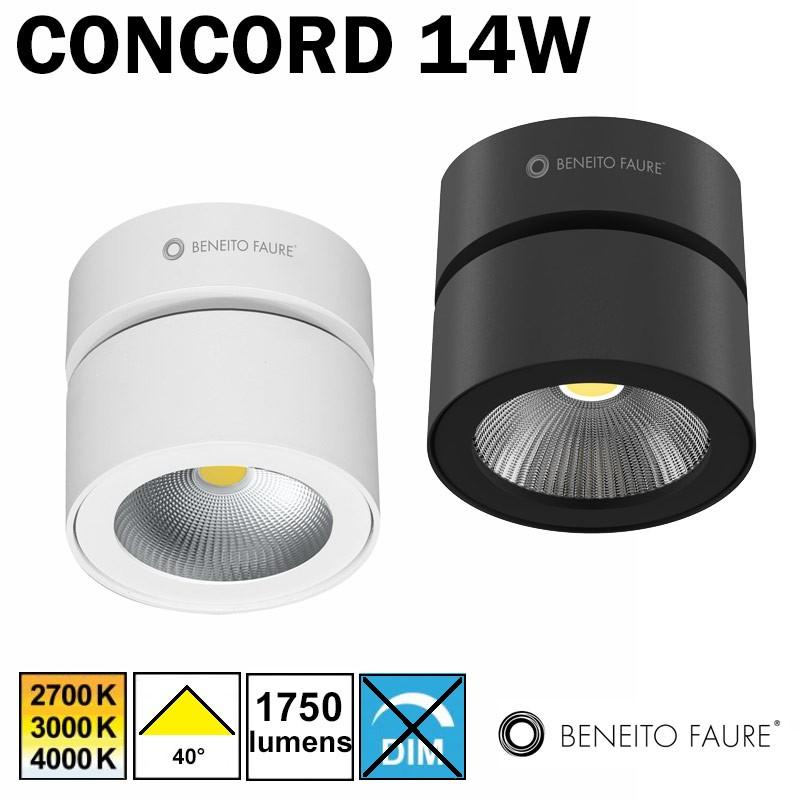 Plafonnier ou applique BENEITO CONCORD14W