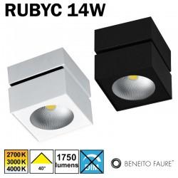 Plafonnier ou applique BENEITO RUBYC 14W